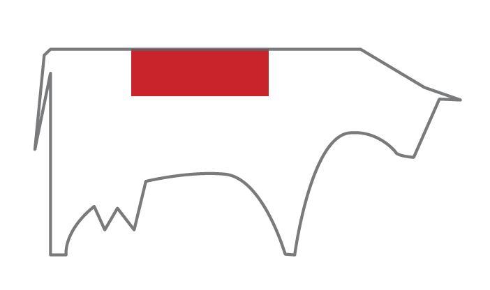t-bone de vaca capricho